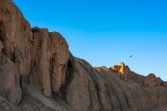 Eagle in volo sopra le rocce Immagine Stock