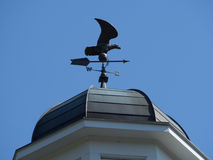Eagle Weathervane Fotografia Stock