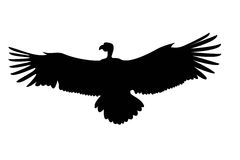 Eagle on a white. Black silhouette of eagle on a white vector illustration
