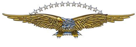 Eagle y estrellas Imagenes de archivo