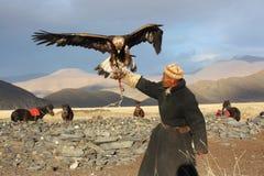 Eaglehunter em mongolia Imagem de Stock