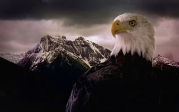EagleMountain Foto de Stock Royalty Free