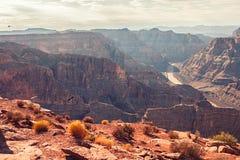 Eagles летая над шикарным гранд-каньоном сценарным обозревают Стоковое Изображение RF
