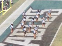 Eagles cheerleaders royalty free stock photography