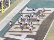 Eagles-cheerleaders royalty-vrije stock fotografie