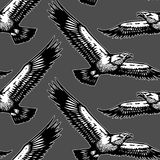 Eagles dark pattern Royalty Free Stock Photo