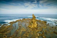 Eagles gniazdeczko, Australia fotografia royalty free