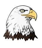 Eagles-hoofd Stock Foto