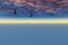 Eagles im Flug Lizenzfreies Stockfoto
