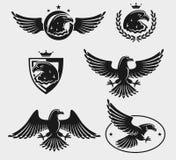 Eagles set. Vector Stock Image
