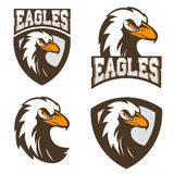 Eagles. sport team logo template. Stock Photos