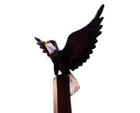Eagles wood Statue on isolated blackground Stock Images