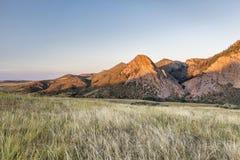 Eaglr在日落的巢岩石 库存图片