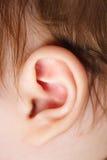 Ear Royalty Free Stock Image