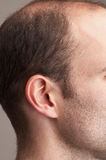 Ear. Detail of man's ear Royalty Free Stock Photography