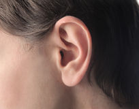 Ear. Closeup of a man's ear stock images