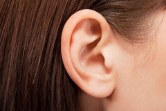 Ear. Women's ear with hair close-up Stock Photo