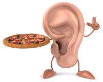 Ear Stock Photography