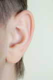 Ear. Boy close-up on a green background Stock Photos