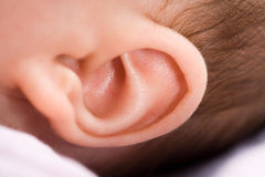 Ear of a baby. Closeup of a 3 months old baby's ear. Much details stock photos