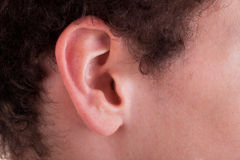 Ear of a boy Royalty Free Stock Images