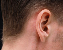 Ear of caucasian male person. At closeup Stock Photography