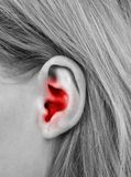 Ear closeup Royalty Free Stock Photo