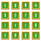 Ear corn icons set green Royalty Free Stock Photo