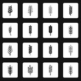 Ear corn icons set squares vector Stock Images