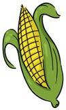 Ear of corn illustration royalty free illustration