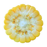 Ear of Corn Royalty Free Stock Photography