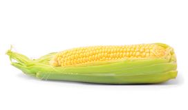 Ear of Corn isolated on a white background Royalty Free Stock Photos