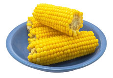 Ear of Corn Stock Photo