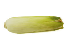 Ear of Corn isolated Stock Photos