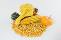 Ear of corn with loose kernels Royalty Free Stock Photos