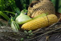 Ear of corn, peas, onion and straw hat. Stock Photos
