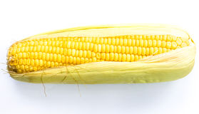 Ear of corn. On a white background Royalty Free Stock Photography