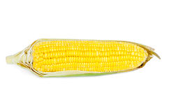 Ear of Corn on a white background Stock Photography
