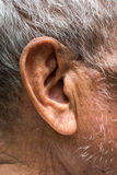 Ear elderly Royalty Free Stock Photos