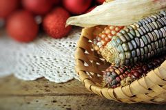 Ear of Indian corn in basket Royalty Free Stock Photo