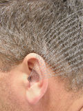 Ear listening. The human ear in entering letters (information, data, numbers Royalty Free Stock Image