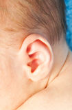 Ear little newborn baby Stock Photos