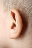 Ear macro Stock Photos