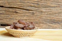 Ear mushroom Royalty Free Stock Images
