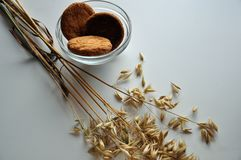 Ear of oats and biscuits in the vase Royalty Free Stock Photos
