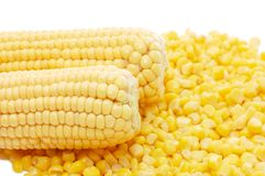 Ear Of Fresh Corn And Tinned Corn Royalty Free Stock Photos
