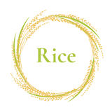 Ear of rice logo design, circle frame vector, plant. Sign vector illustration