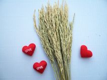 Ear of rice and sign showing heart embroidered red letters love Royalty Free Stock Photography