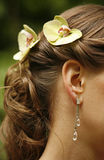 Ear rings. The image of the girl in ear rings royalty free stock photo