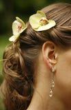 Ear rings Royalty Free Stock Photo